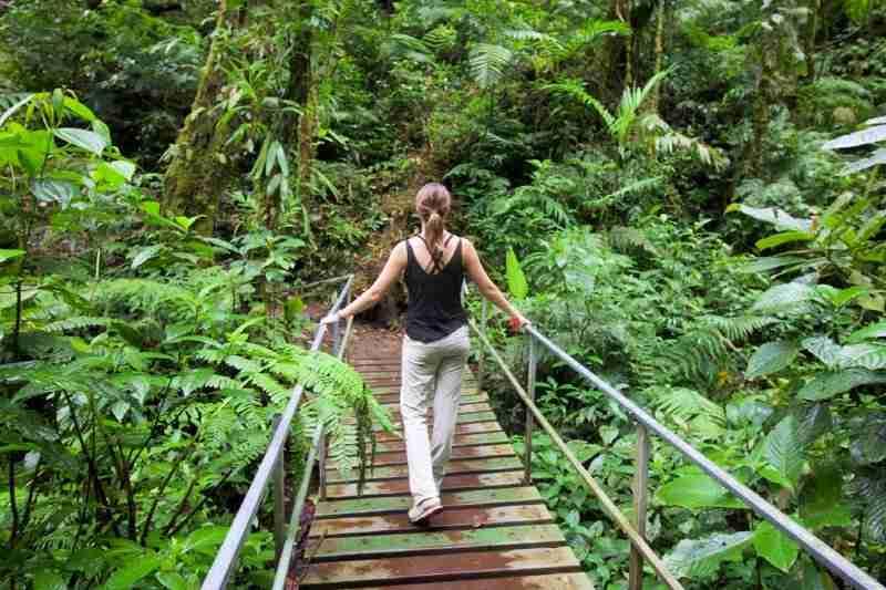 santa elena bridge monteverde costa rica