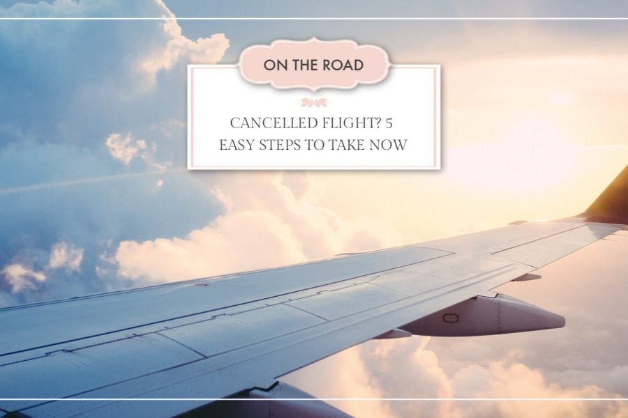Cancelled Flight? 5 Easy Steps to Take Now